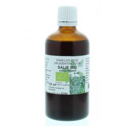 Salvia tribola fol / salie tinctuur bio