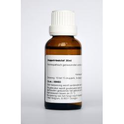 Conium maculatum D12