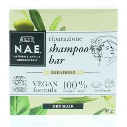 Riparazione shampoo bar...