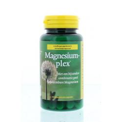 Magnesiumplex